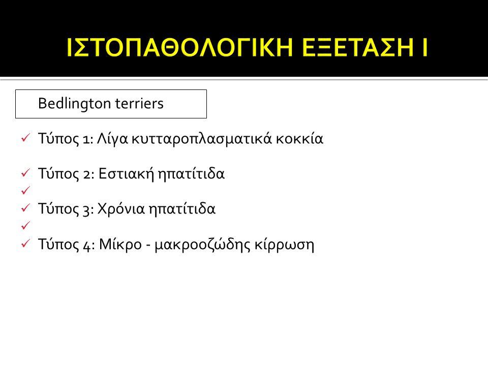 ΙΣΤΟΠΑΘΟΛΟΓΙΚΗ ΕΞΕΤΑΣΗ Ι
