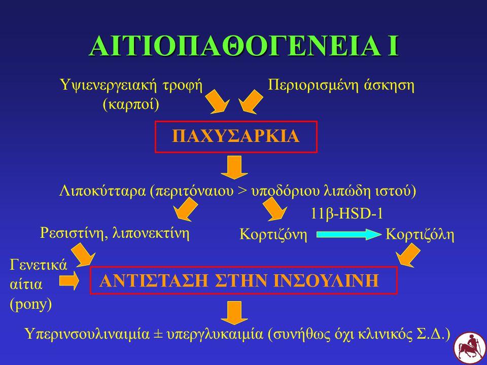 ΑΙΤΙΟΠΑΘΟΓΕΝΕΙΑ Ι ΠΑΧΥΣΑΡΚΙΑ ΑΝΤΙΣΤΑΣΗ ΣΤΗΝ ΙΝΣΟΥΛΙΝΗ