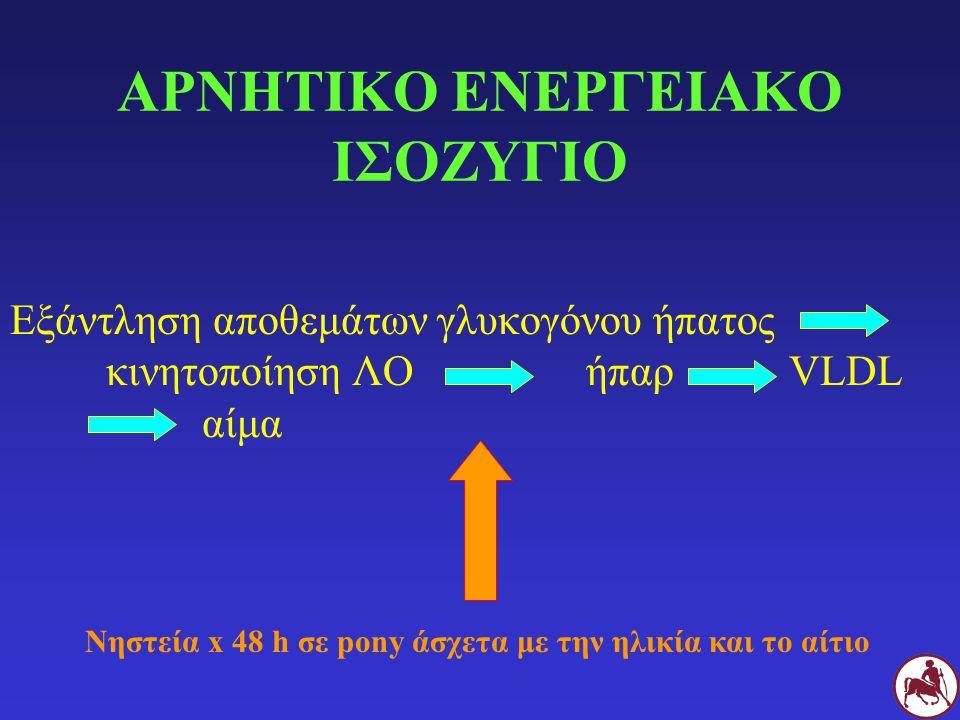 ΑΡΝΗΤΙΚΟ ΕΝΕΡΓΕΙΑΚΟ ΙΣΟΖΥΓΙΟ