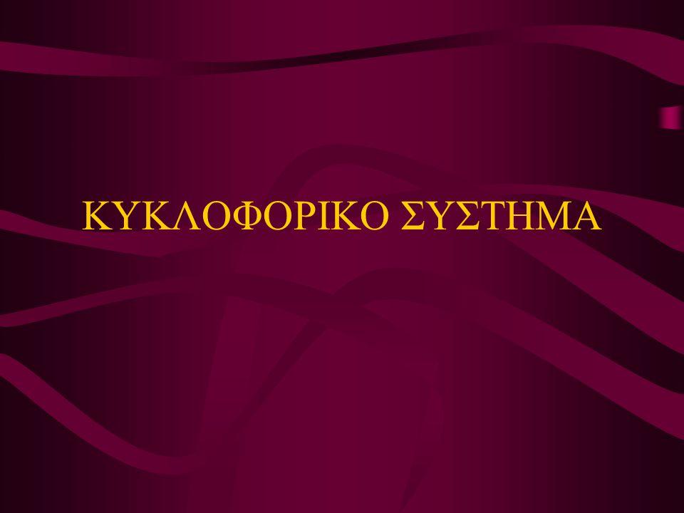 ΚΥΚΛΟΦΟΡΙΚΟ ΣΥΣΤΗΜΑ