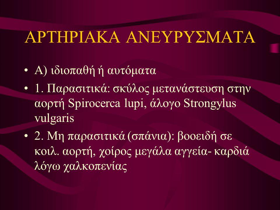 ΑΡΤΗΡΙΑΚΑ ΑΝΕΥΡΥΣΜΑΤΑ
