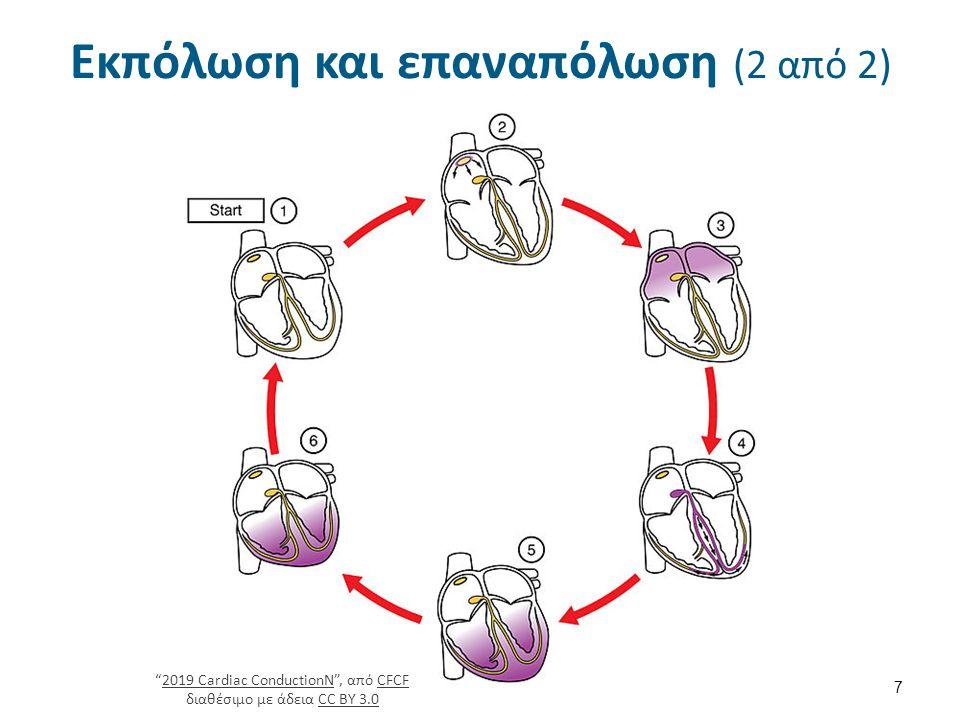 Δυναμικό ηρεμίας (2 από 5)