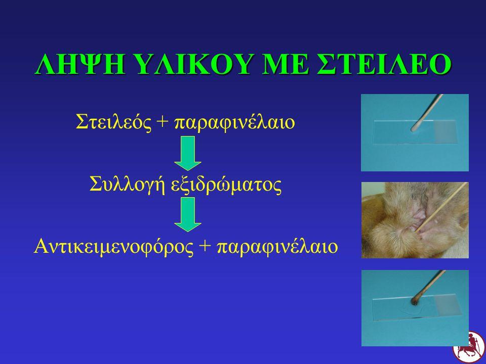 ΛΗΨΗ ΥΛΙΚΟΥ ΜΕ ΣΤΕΙΛΕΟ Στειλεός + παραφινέλαιο Συλλογή εξιδρώματος