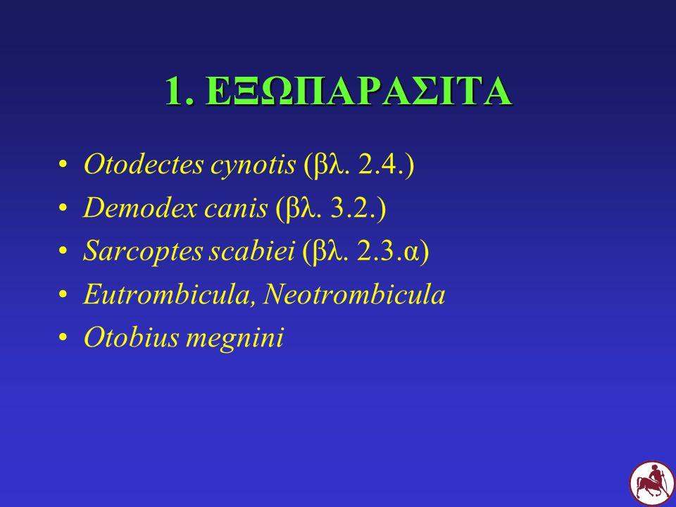 1. ΕΞΩΠΑΡΑΣΙΤΑ Otodectes cynotis (βλ. 2.4.) Demodex canis (βλ. 3.2.)