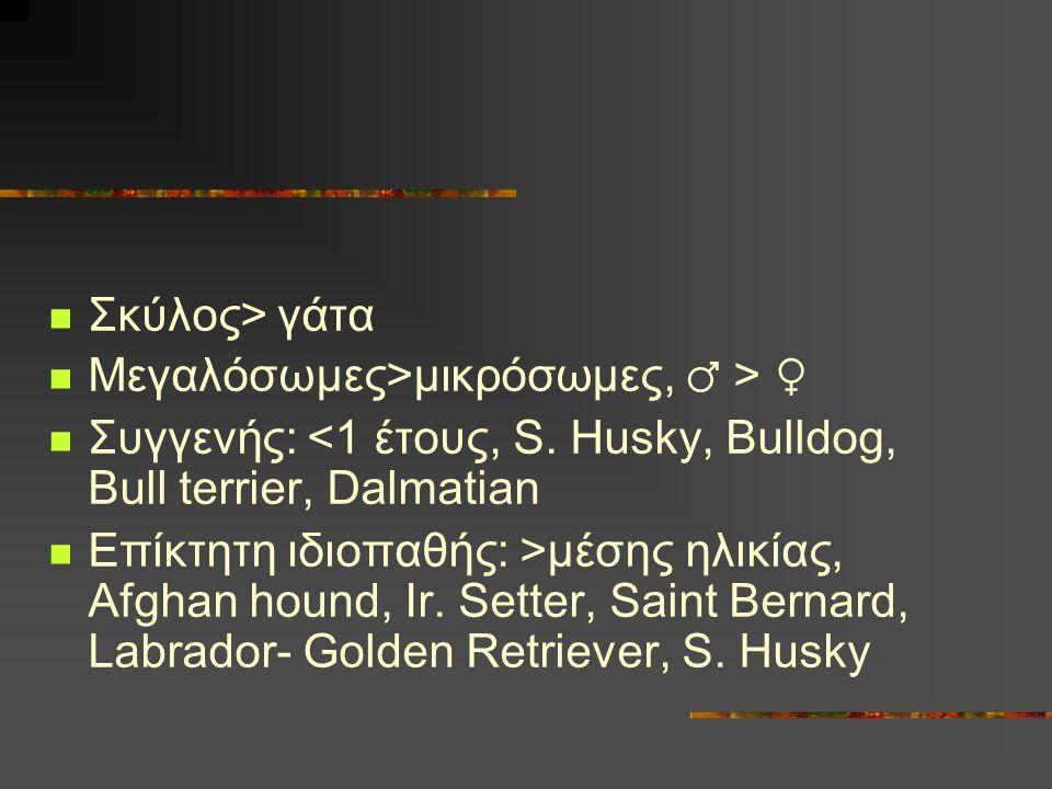 Σκύλος> γάτα Μεγαλόσωμες>μικρόσωμες, ♂ > ♀ Συγγενής: <1 έτους, S. Husky, Bulldog, Bull terrier, Dalmatian.