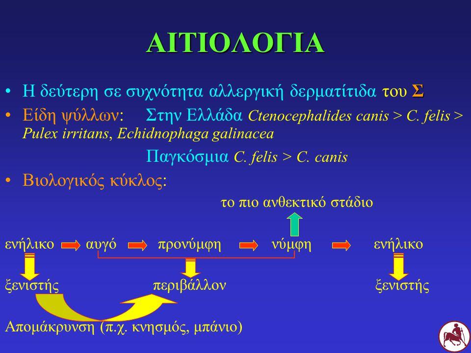 ΑΙΤΙΟΛΟΓΙΑ Η δεύτερη σε συχνότητα αλλεργική δερματίτιδα του Σ