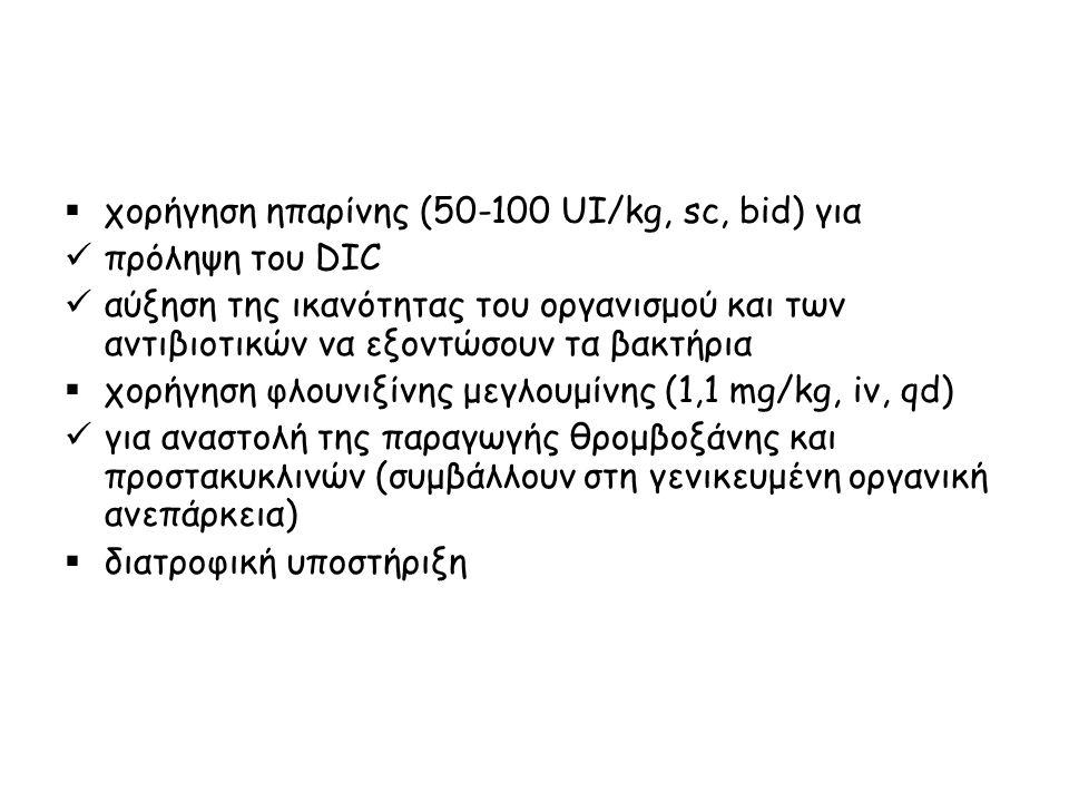 χορήγηση ηπαρίνης (50-100 UI/kg, sc, bid) για