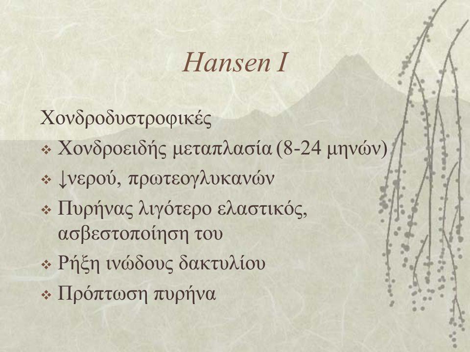 Hansen I Χονδροδυστροφικές Χονδροειδής μεταπλασία (8-24 μηνών)