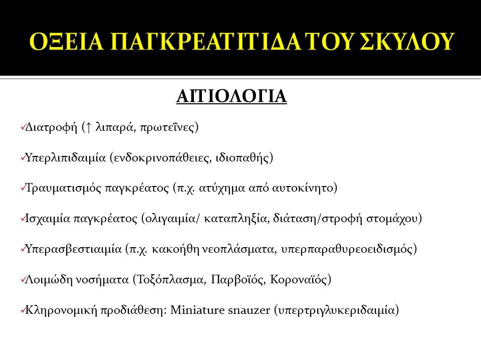 ΟΞΕΙΑ ΠΑΓΚΡΕΑΤΙΤΙΔΑ ΤΟΥ ΣΚΥΛΟΥ
