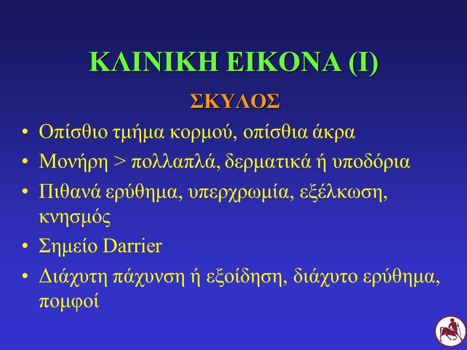 ΚΛΙΝΙΚΗ ΕΙΚΟΝΑ (Ι) ΣΚΥΛΟΣ Οπίσθιο τμήμα κορμού, οπίσθια άκρα