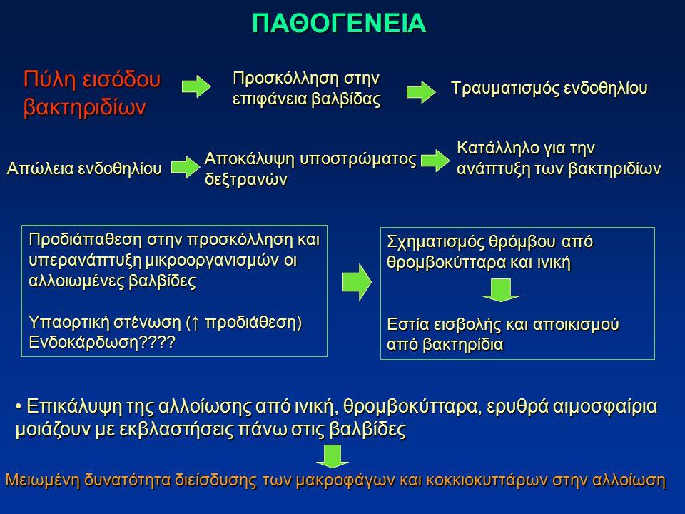 ΠΑΘΟΓΕΝΕΙΑ Πύλη εισόδου βακτηριδίων