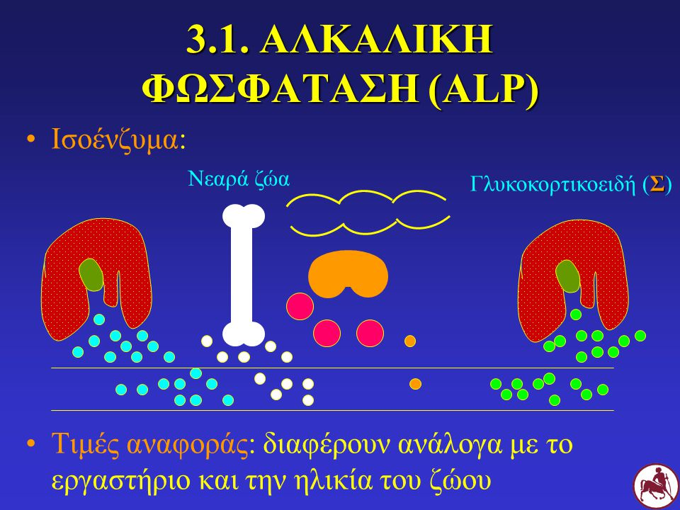 3.1. ΑΛΚΑΛΙΚΗ ΦΩΣΦΑΤΑΣΗ (ALP)