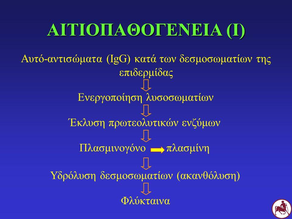 Αυτό-αντισώματα (IgG) κατά των δεσμοσωματίων της επιδερμίδας