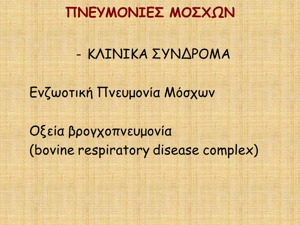 ΠΝΕΥΜΟΝΙΕΣ ΜΟΣΧΩΝ ΚΛΙΝΙΚΑ ΣΥΝΔΡΟΜΑ. Ενζωοτική Πνευμονία Μόσχων.