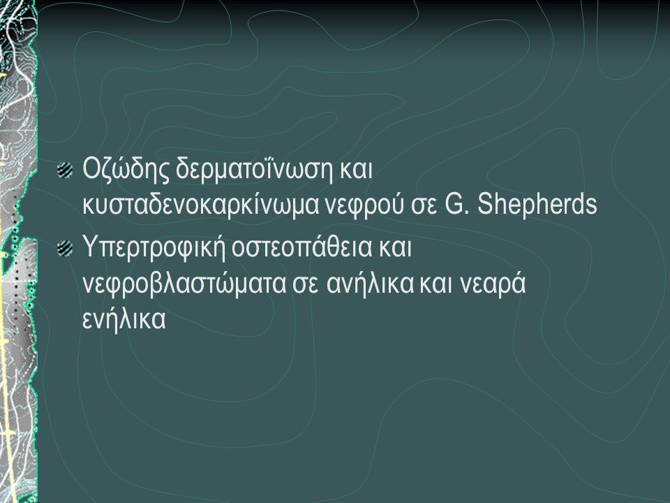 Οζώδης δερματοΐνωση και κυσταδενοκαρκίνωμα νεφρού σε G. Shepherds