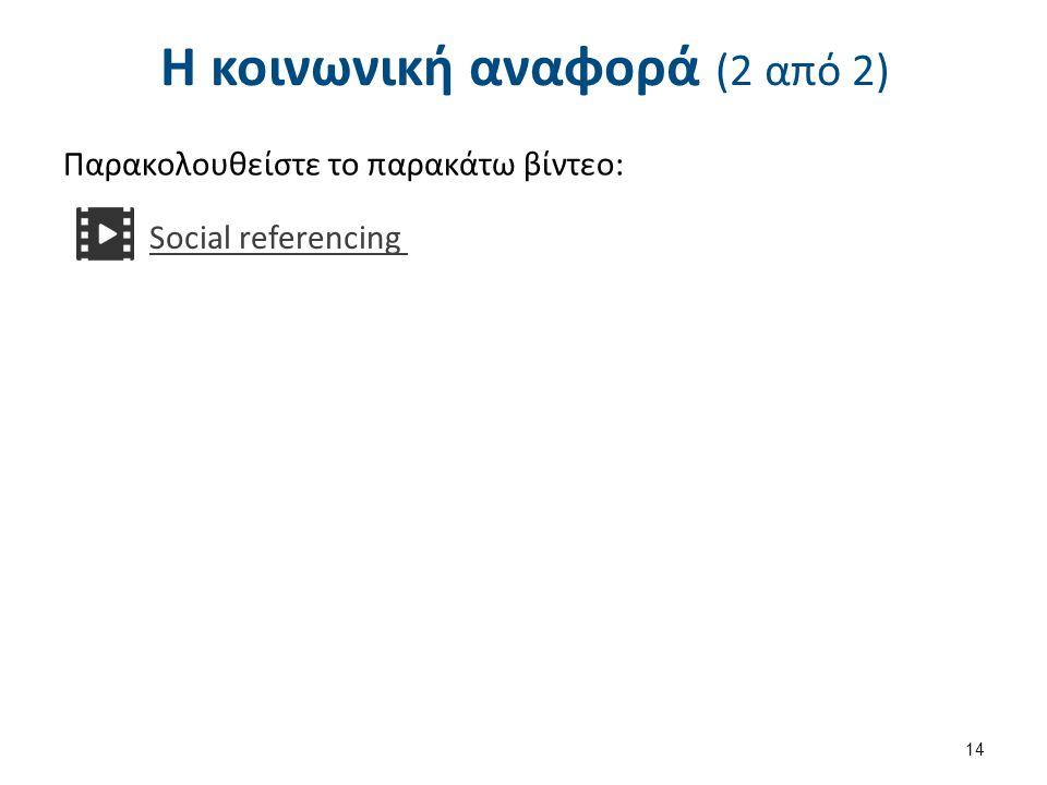 Τα βασικά συστατικά της κοινωνικής αναφοράς