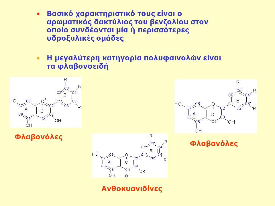 Βασικό χαρακτηριστικό τους είναι ο αρωματικός δακτύλιος του βενζολίου στον οποίο συνδέονται μία ή περισσότερες υδροξυλικές ομάδες