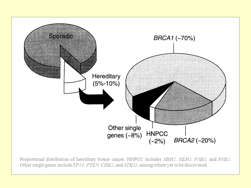 Proportional distribution of hereditary breast cancer