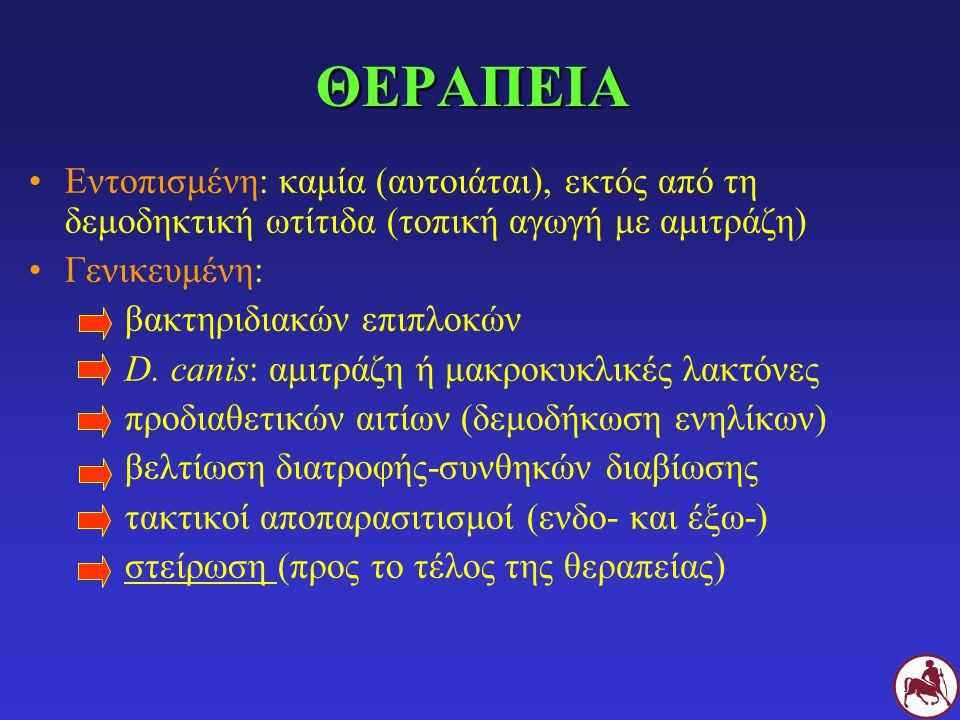 ΘΕΡΑΠΕΙΑ Εντοπισμένη: καμία (αυτοιάται), εκτός από τη δεμοδηκτική ωτίτιδα (τοπική αγωγή με αμιτράζη)