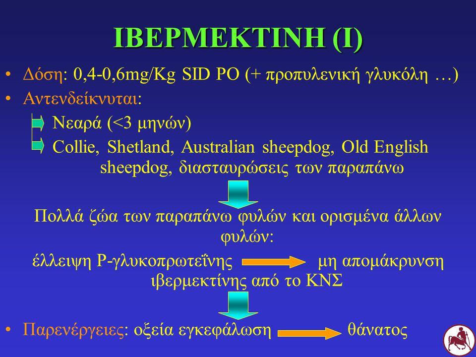 ΙΒΕΡΜΕΚΤΙΝΗ (Ι) Δόση: 0,4-0,6mg/Kg SID PO (+ προπυλενική γλυκόλη …)