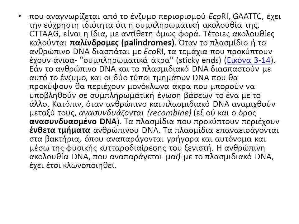 που αναγνωρίζεται από το ένζυμο περιορισμού EcoRI, GAATTC, έχει την εύχρηστη ιδιότητα ότι η συμπληρωματική ακολουθία της, CTTAAG, είναι η ίδια, με αντίθετη όμως φορά.