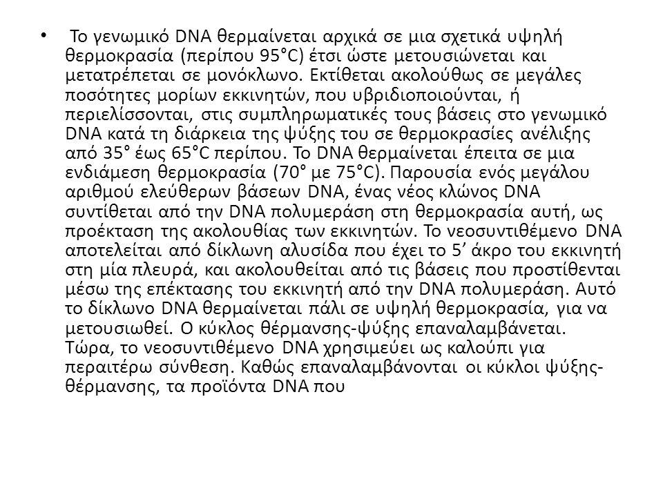 Το γενωμικό DNA θερμαίνεται αρχικά σε μια σχετικά υψηλή θερμοκρασία (περίπου 95°C) έτσι ώστε μετουσιώνεται και μετατρέπεται σε μονόκλωνο.