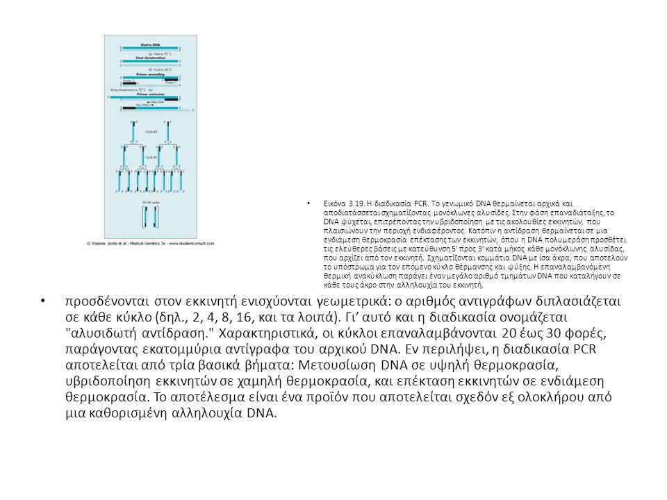 Εικόνα 3. 19. Η διαδικασία PCR
