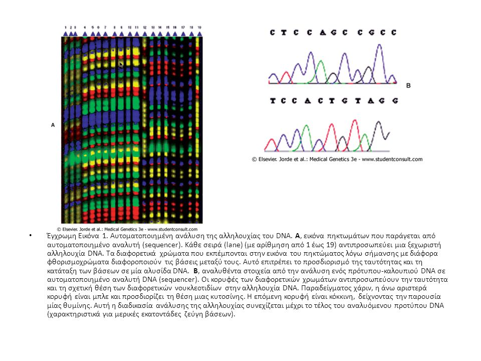 Έγχρωμη Εικόνα 1. Αυτοματοποιημένη ανάλυση της αλληλουχίας του DNA