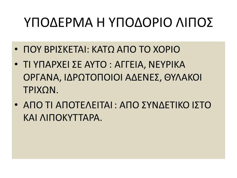 YΠΟΔΕΡΜΑ Η ΥΠΟΔΟΡΙΟ ΛΙΠΟΣ
