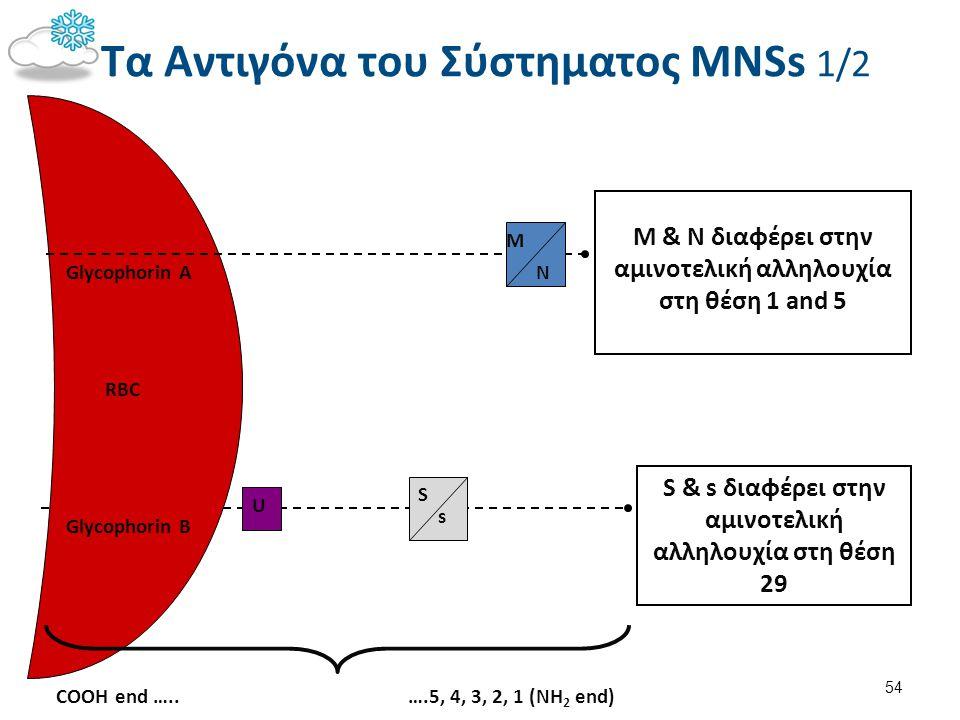 Τα Αντιγόνα του Σύστηματος MNSs 2/2