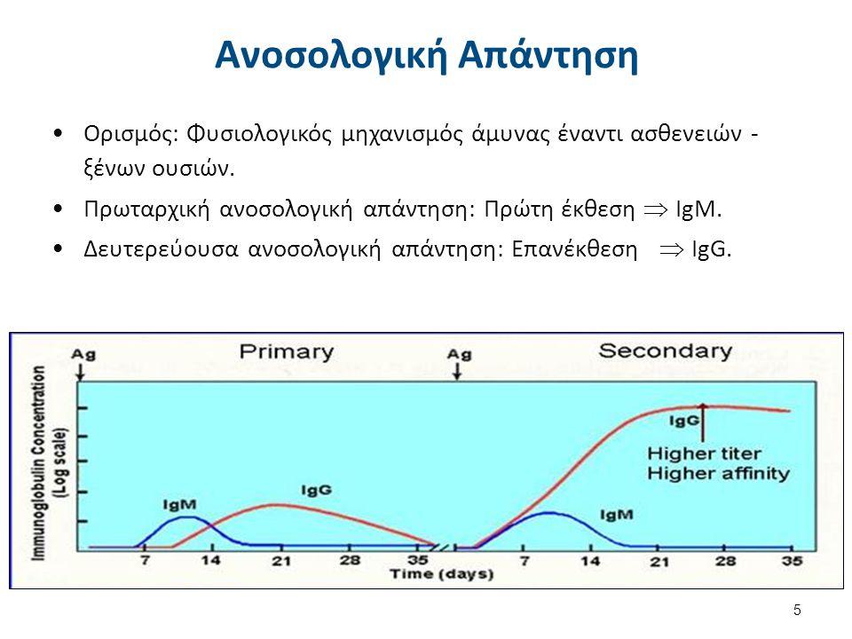Αντίδραση Αντιγόνο/Αντίσωμα