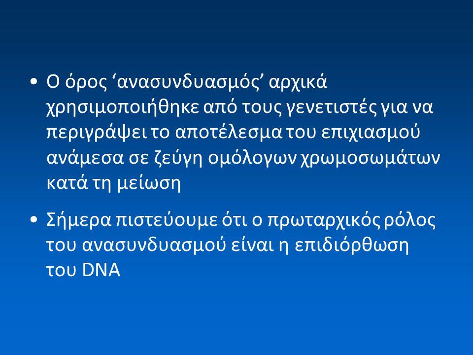 Ο όρος 'ανασυνδυασμός' αρχικά χρησιμοποιήθηκε από τους γενετιστές για να περιγράψει το αποτέλεσμα του επιχιασμού ανάμεσα σε ζεύγη ομόλογων χρωμοσωμάτων κατά τη μείωση