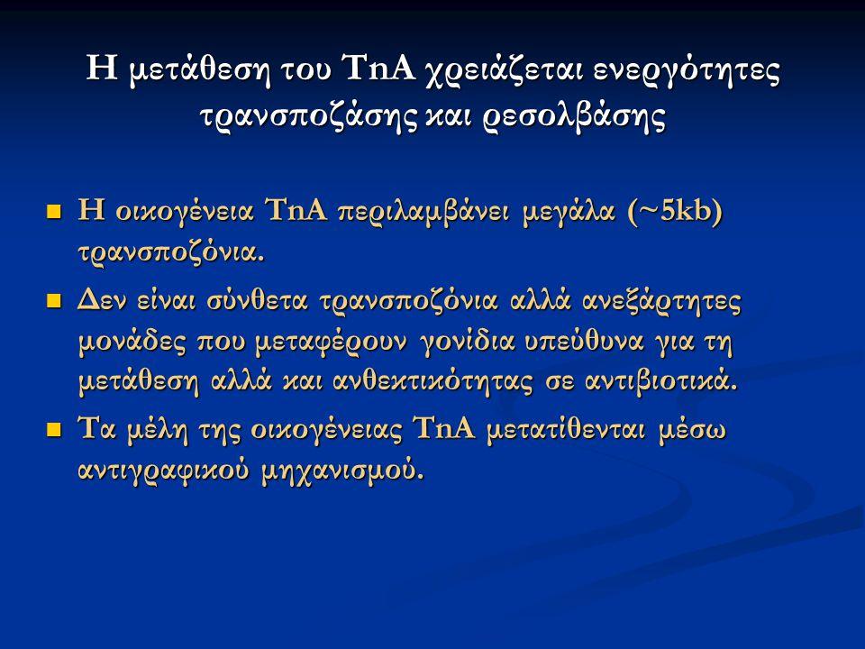 Η μετάθεση του TnA χρειάζεται ενεργότητες τρανσποζάσης και ρεσολβάσης