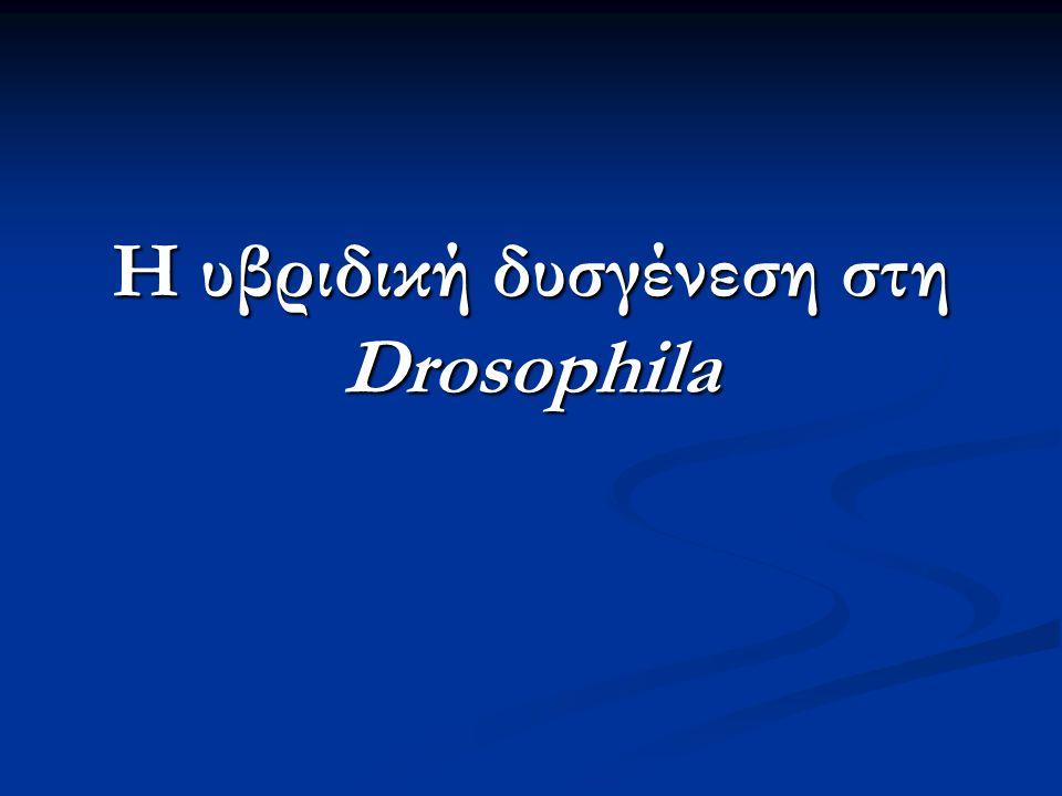 Η υβριδική δυσγένεση στη Drosophila