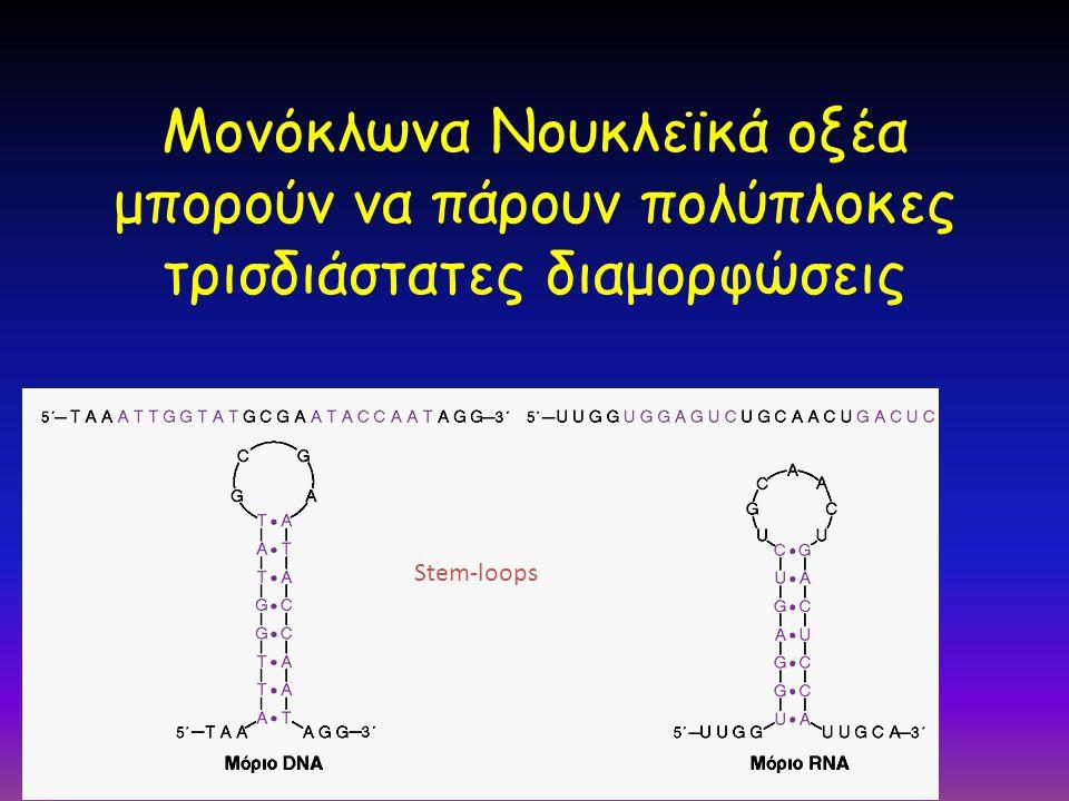 Μονόκλωνα Νουκλεϊκά οξέα μπορούν να πάρουν πολύπλοκες τρισδιάστατες διαμορφώσεις