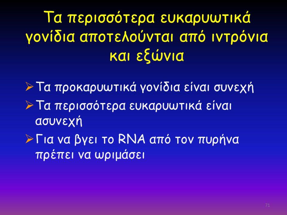 Τα περισσότερα ευκαρυωτικά γονίδια αποτελούνται από ιντρόνια και εξώνια