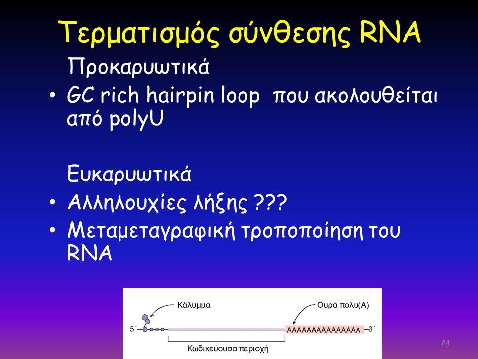 Τερματισμός σύνθεσης RNA