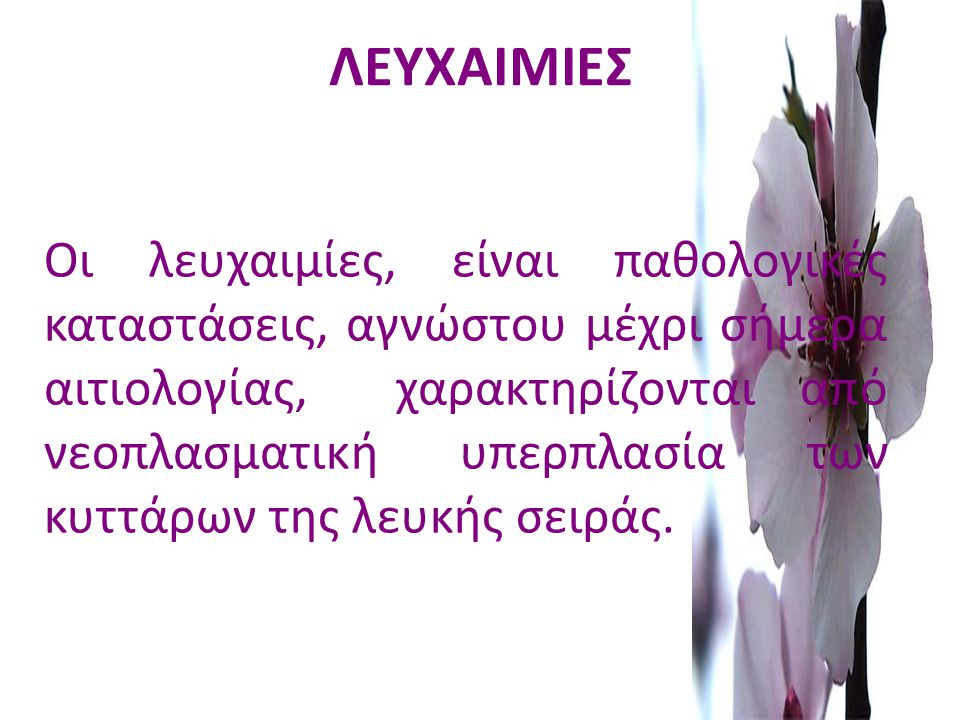 ΛΕΥΧΑΙΜΙΕΣ