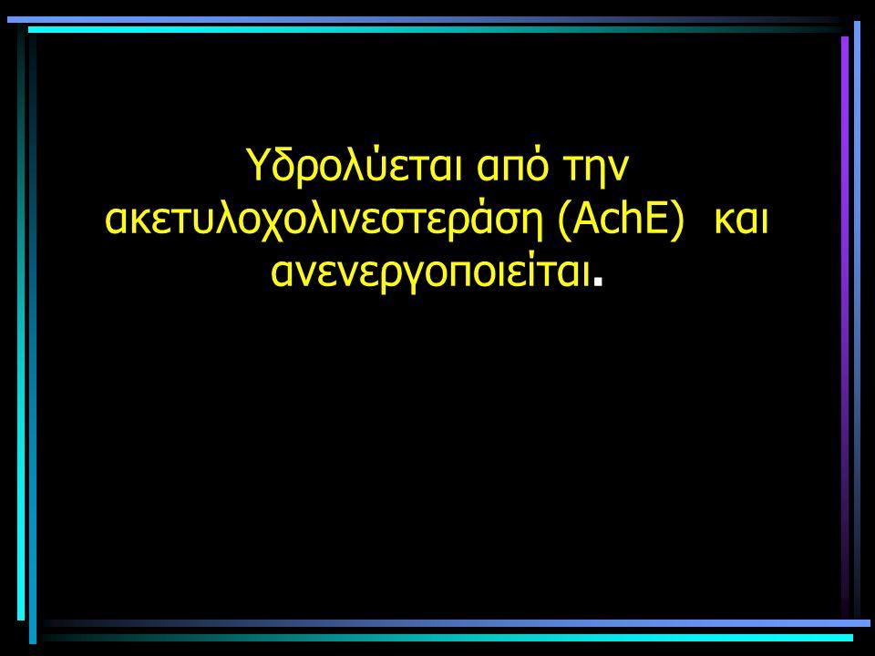 Υδρολύεται από την ακετυλοχολινεστεράση (ΑchE) και ανενεργοποιείται.