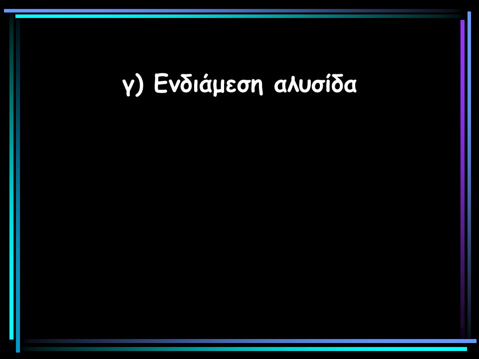 γ) Ενδιάμεση αλυσίδα