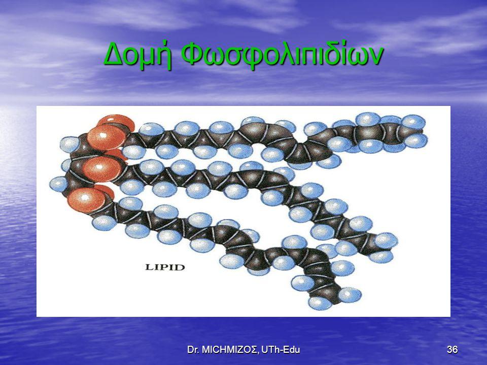 Δομή Φωσφολιπιδίων Dr. ΜΙCHΜΙΖΟΣ, UTh-Edu