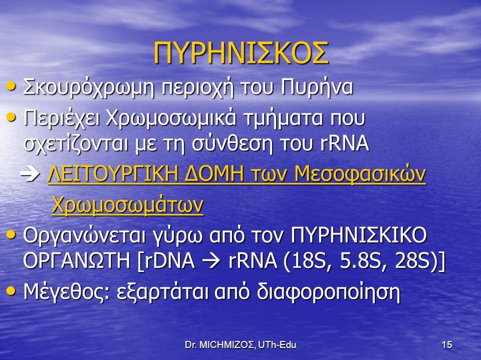 ΠΥΡΗΝΙΣΚΟΣ Σκουρόχρωμη περιοχή του Πυρήνα