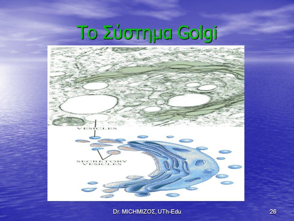 Το Σύστημα Golgi Dr. ΜΙCHΜΙΖΟΣ, UTh-Edu