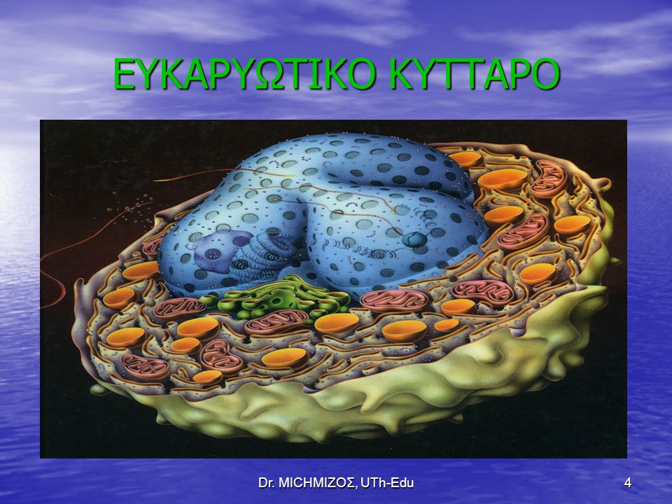ΕΥΚΑΡΥΩΤΙΚΟ ΚΥΤΤΑΡΟ Dr. ΜΙCHΜΙΖΟΣ, UTh-Edu
