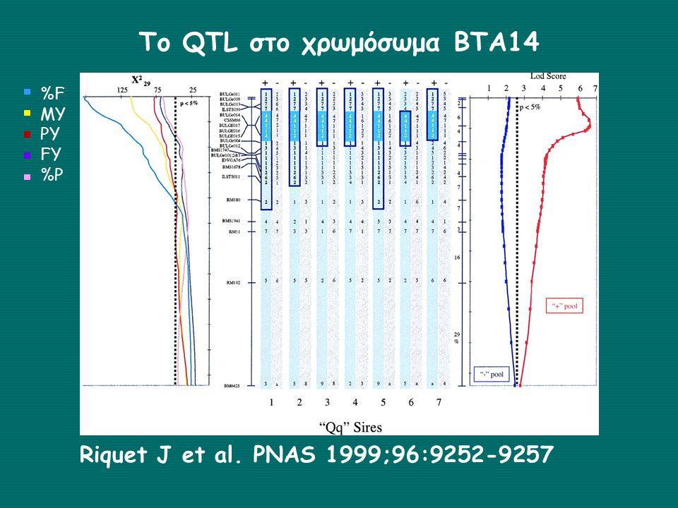 Το QTL στο χρωμόσωμα ΒΤΑ14