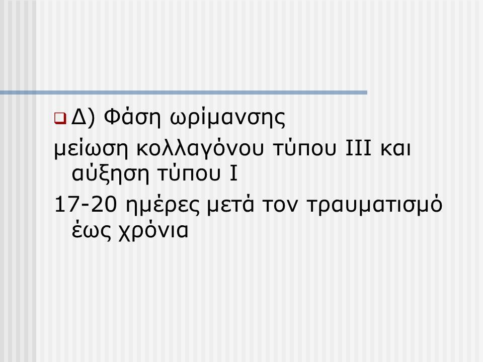 Δ) Φάση ωρίμανσης μείωση κολλαγόνου τύπου ΙΙΙ και αύξηση τύπου Ι.