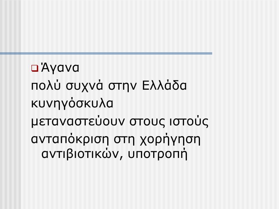 Άγανα πολύ συχνά στην Ελλάδα. κυνηγόσκυλα. μεταναστεύουν στους ιστούς.