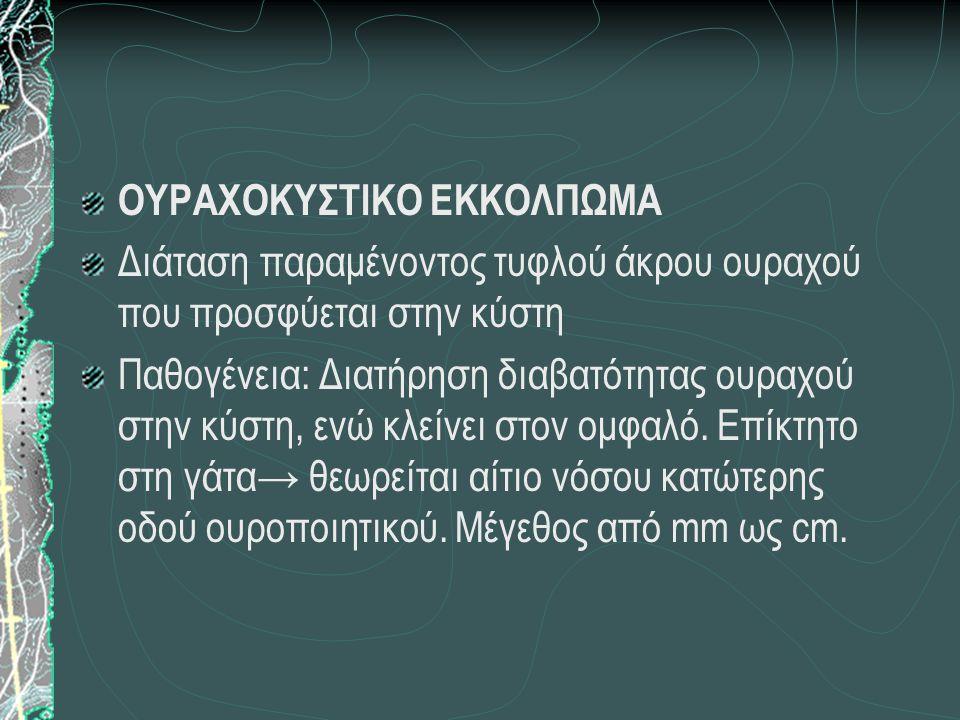 ΟΥΡΑΧΟΚΥΣΤΙΚΟ ΕΚΚΟΛΠΩΜΑ