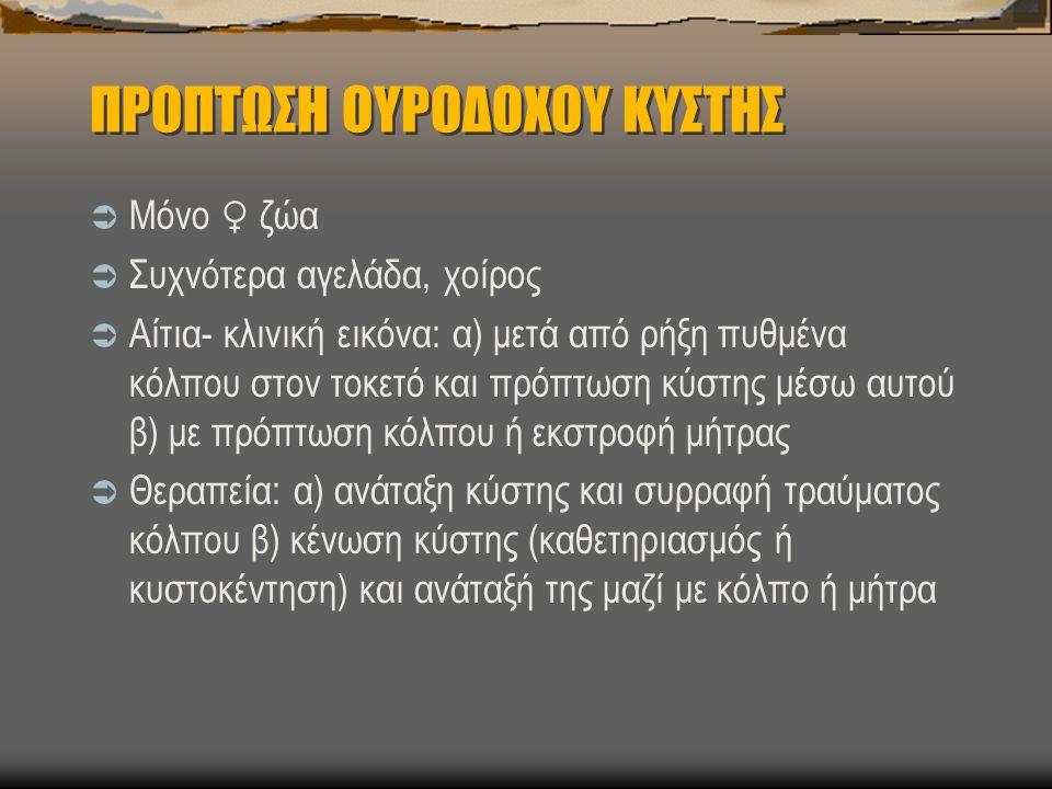 ΠΡΟΠΤΩΣΗ ΟΥΡΟΔΟΧΟΥ ΚΥΣΤΗΣ