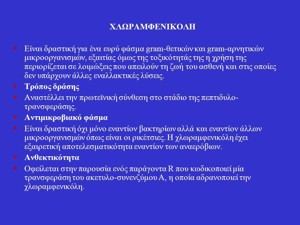 ΧΛΩΡΑΜΦΕΝΙΚΟΛΗ